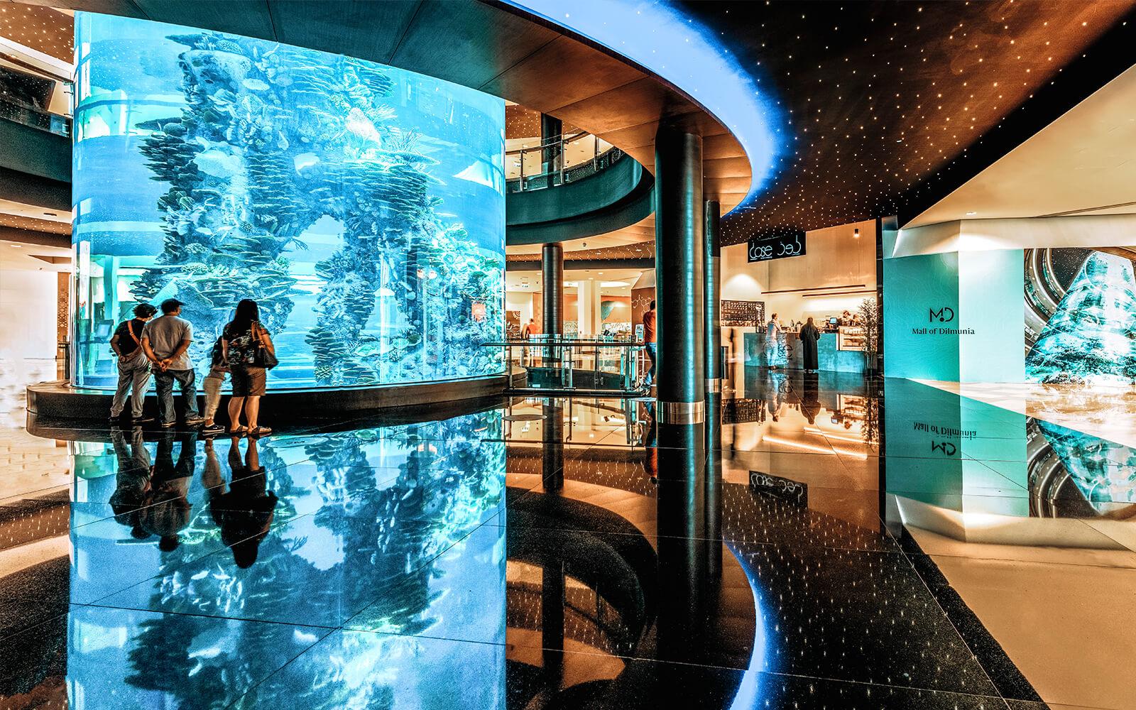 Mall of Dilmunia Honours Bahraini Free Divers for their  Exceptional Performances at Bahrain Aquarium