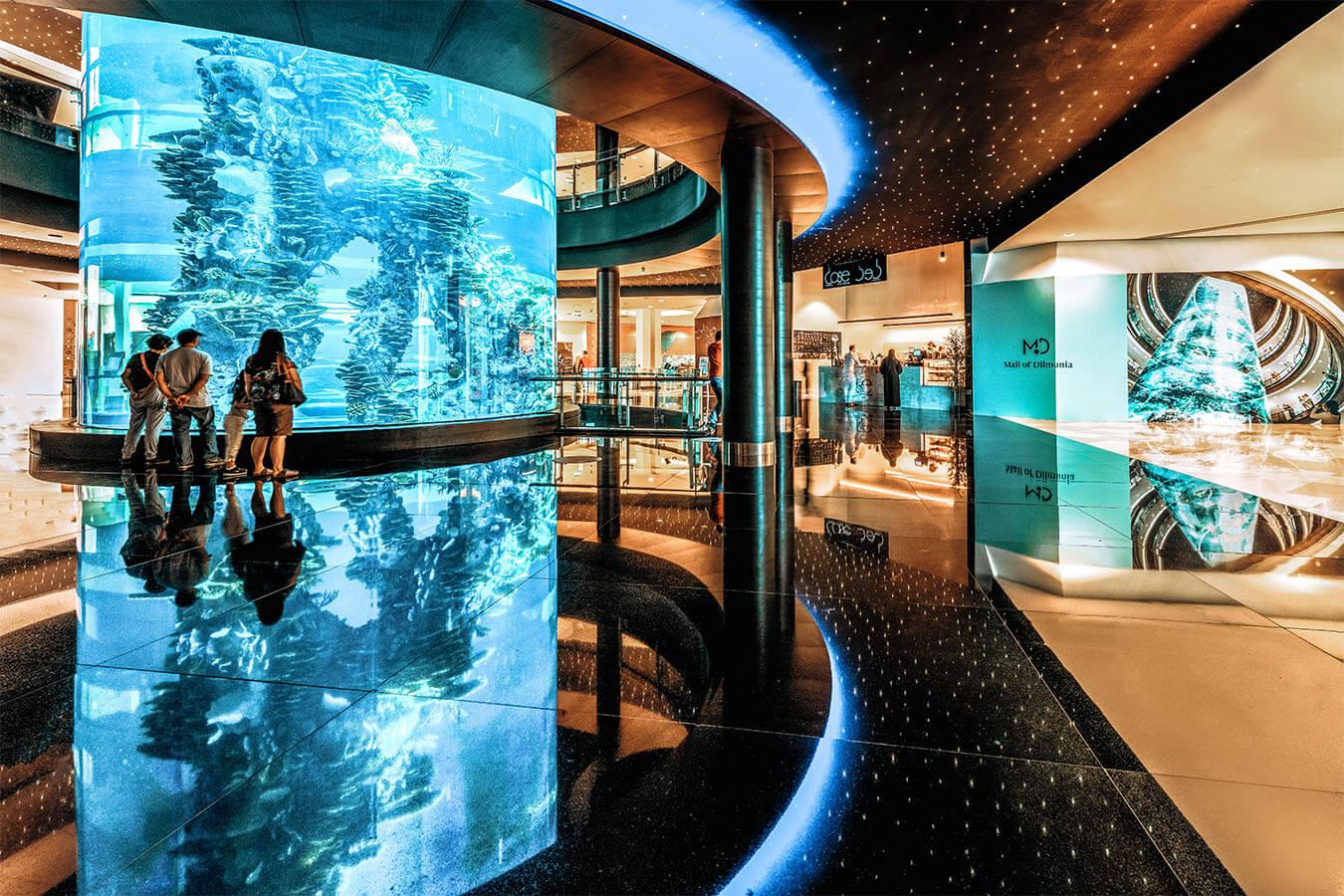 Read more about the article Bahrain Aquarium