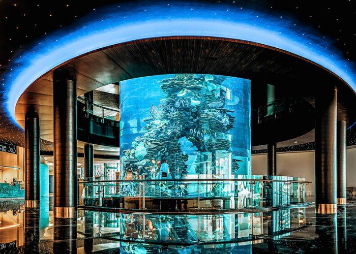 Home - Aquarium Thumbnail